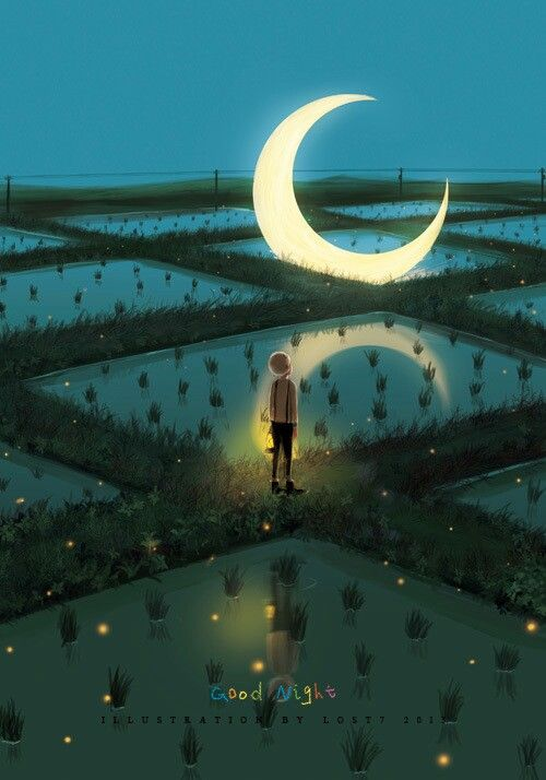 séances nocturnes